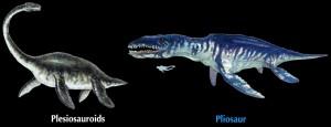 plesiosaur and pliosaur