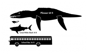 pliosaur-size-comparison
